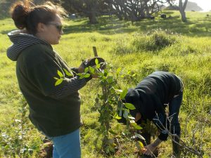 Tewhanauwhero Coastal Care Group (1) x