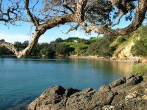 rakino-island