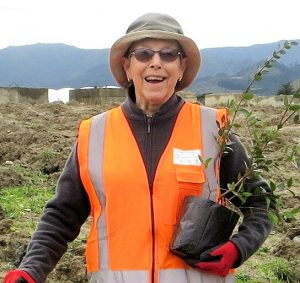 Friends of the Otaki River, Nursery Manager Gloria Thurley, preparing to plant a Project Crimson Northern rata at the Otaki Riv